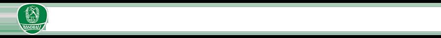 sc-dhfk-leipzig-tabelle