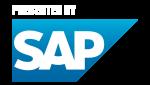 SAP Teamstatistik