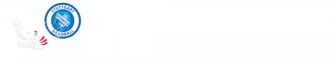 die-eulen-ludwigshafen-vs-tvb-19-02